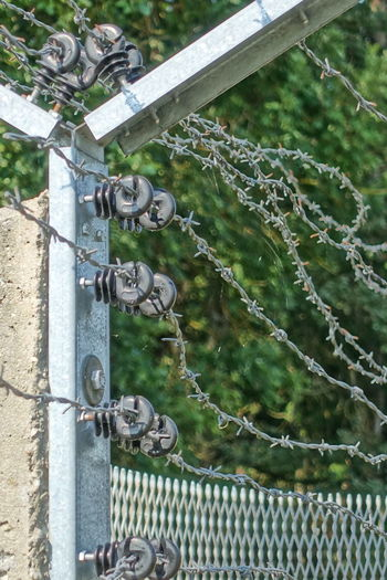 barbed wire Borderline Close-up Day Electric Fence Frontier Frontline Green Color Memorial Nature No People Outdoors Point Alpha Safety Steal Wire For Defence Tourist Attractions Tree
