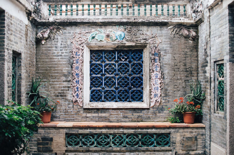 Low angle view of potted plants on wall of building