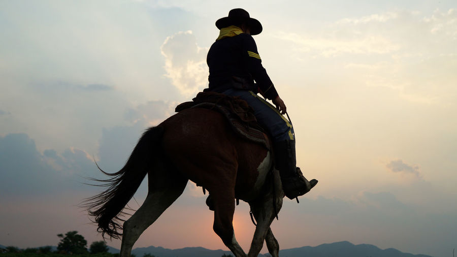 Low angle view of person riding horse against sky during sunset