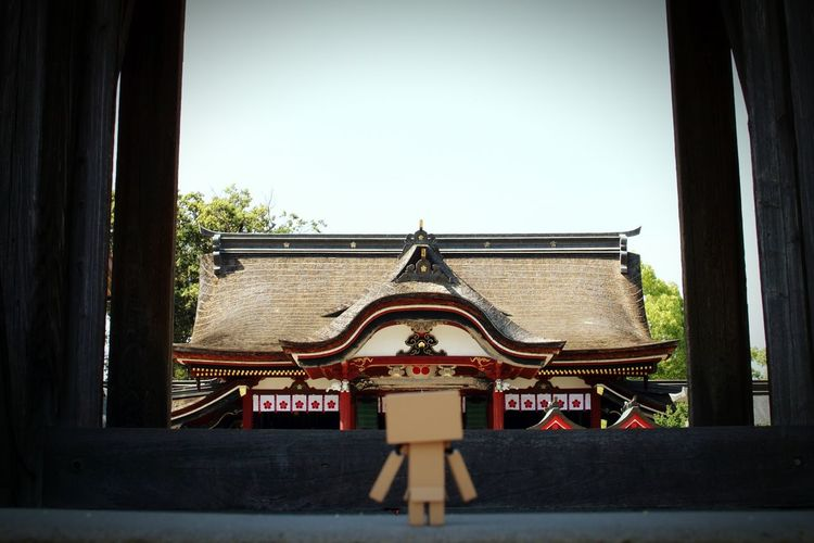 みったさんさよなら! Danbo EyeEm Gallery Japanese Shrine Sky And Trees Depth Of Field Taking Photos