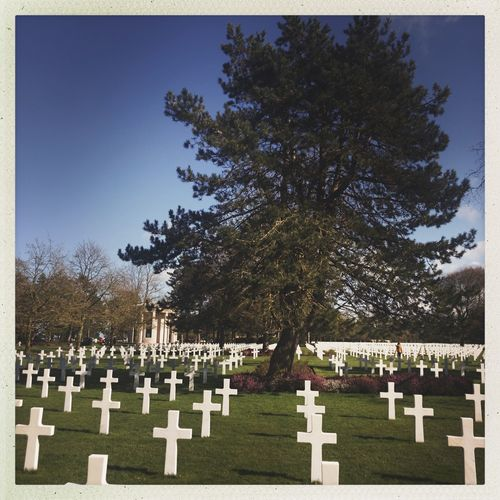 Omaha Beach Kris Demey Photography Tombstone Cemetery Memorial Tree Cross Gravestone Grave Graveyard Grass Day War Outdoors Military Army Soldier Clear Sky Sky People Nature