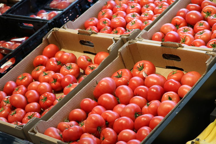 Tomatoes in market for sale