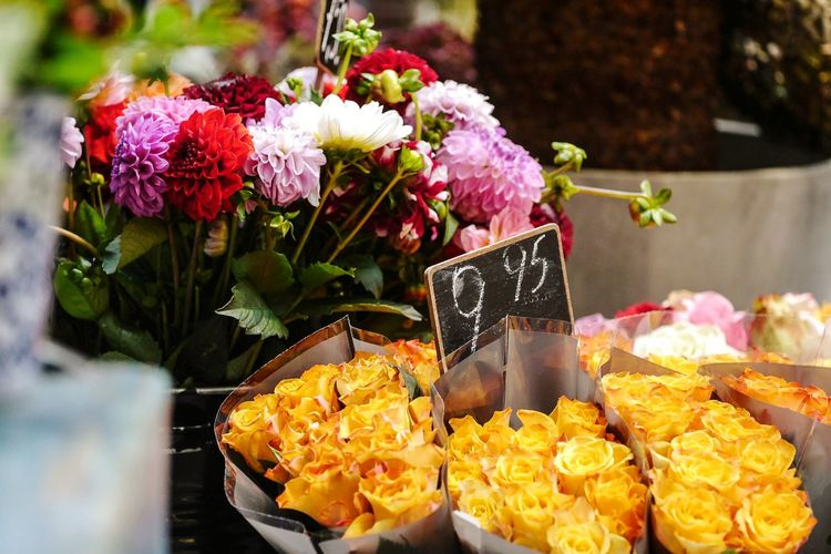 Close-up of various flowers for sale