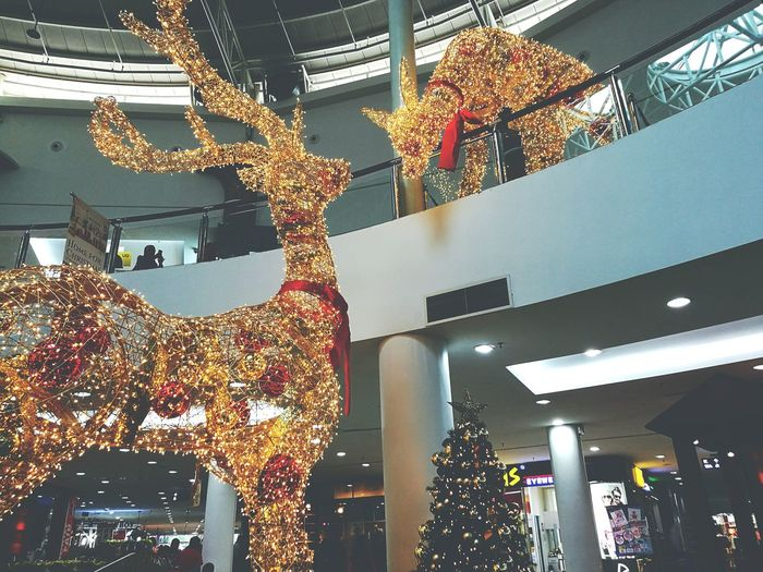 Merry Christmas Christmas Christmas Decoration Lighting Equipment Christmas Lights Illuminated No People Christmas Tree Indoors  City Christmas Ornament Shiny Architecture Night