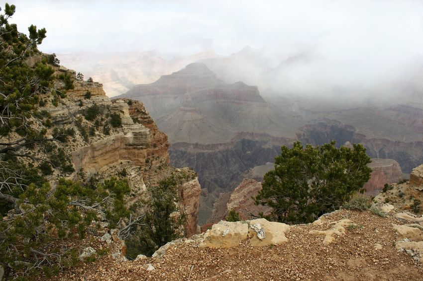 Foggy Clouds over Grand Canyon South Rim Cloud Clouds Over Grand Canyon Cloudscape Cloudy Cloudy Day Grand Canyon Grand Canyon National Park Grand Canyon Weather Grand Canyon, South Rim Weather Photography Beauty In Nature Cloud And Sky Clouds Clouds And Sky Day Foggy Clouds Grand Canyon, Az Landscape Mountain Nature No People Outdoors Scenics Tranquility Weather Condition