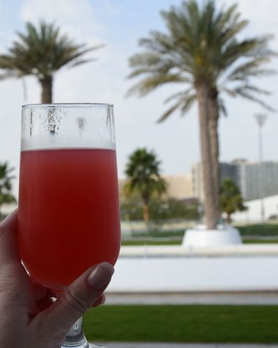 Palm Tree Human Hand Refreshment Drink Watermelonjuice Abudhabi YasMarinaCircuit