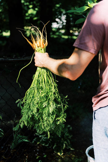 Midsection of man holding plant