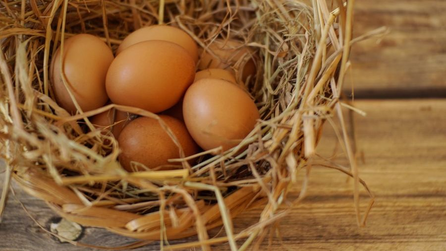 Eggs in basket Cooking Raw Wild Animal Dry Grass Hay Farm Thai Chıcken Chick Egg Food Food And Drink Healthy Eating Wellbeing Animal Egg Brown Animal Nest Freshness Raw Food Container Basket Nature Close-up Still Life