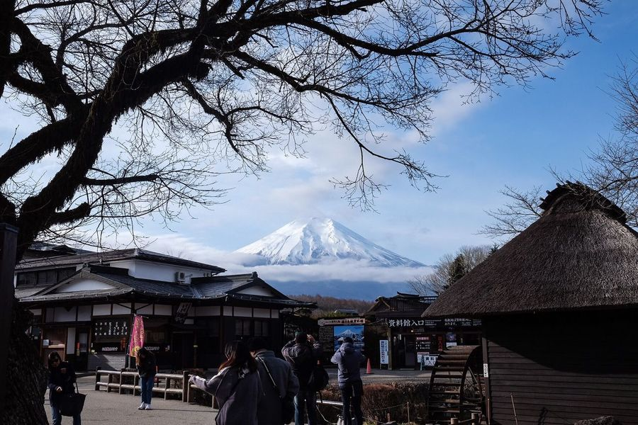 Mountain Tree Cold Temperature Nature Snow Beauty In Nature Winter Outdoors Day Sky Real People Men Scenics Architecture Built Structure Large Group Of People Bare Tree Landscape People Japan Fuji Mountain Daytime Oshinohakkai Real People, Real Lives Adult