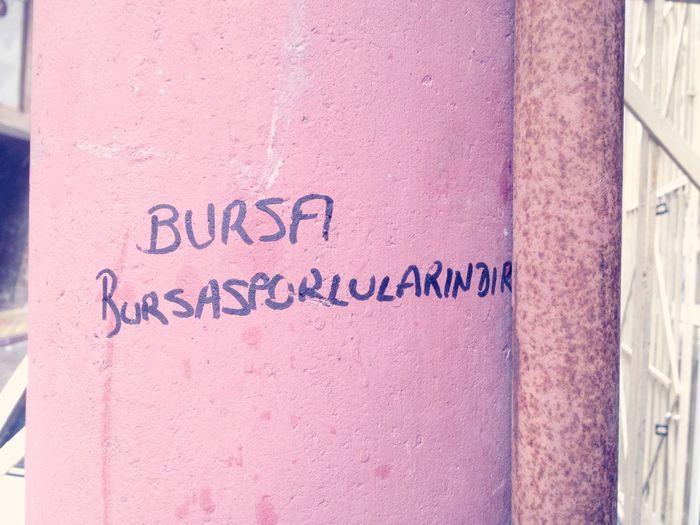 Bursa Bursa / Turkey Bursaspor Bursalovers