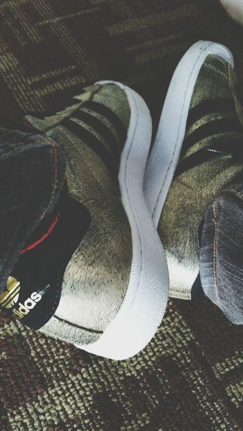 Adidas Shoes Gold Black White Open Edit