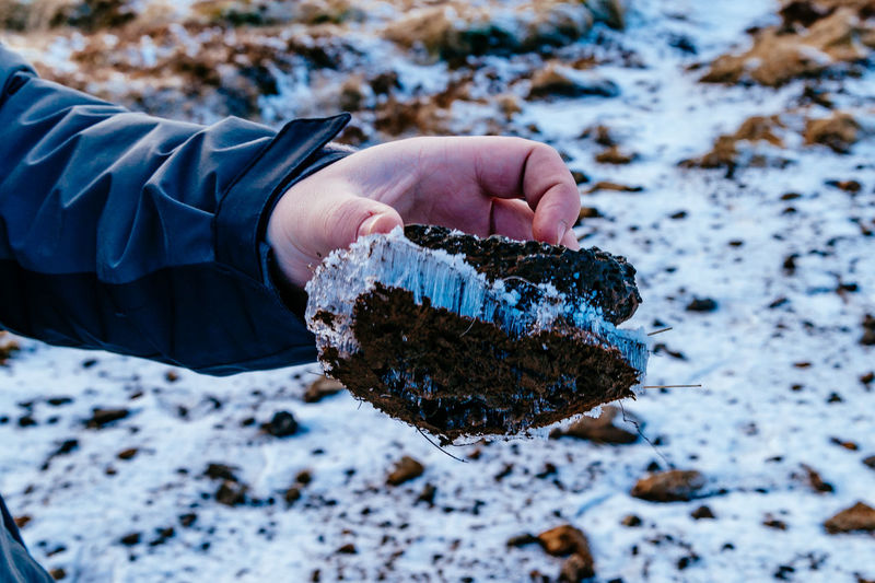 Cropped image of person holding frozen rock