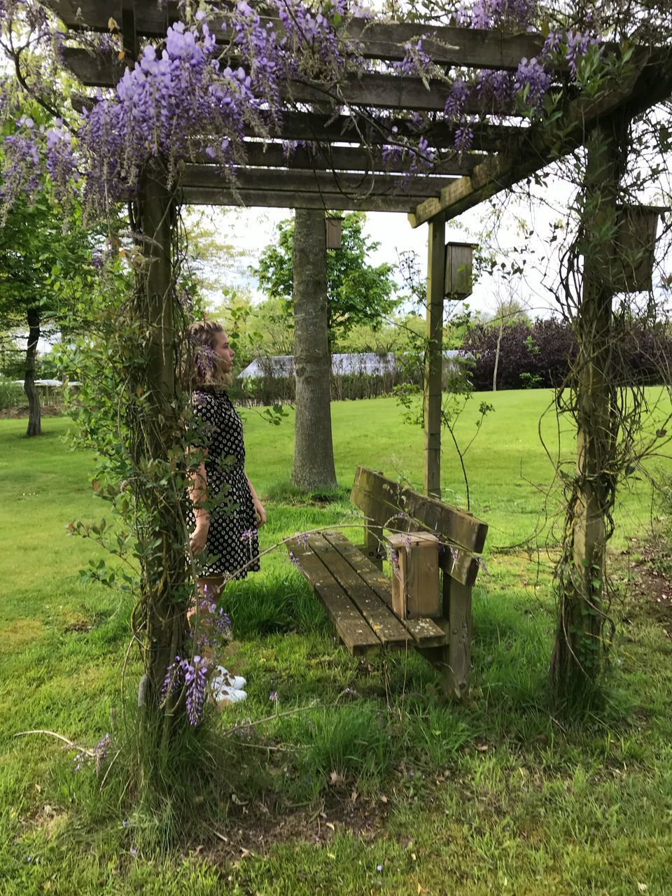plant, tree, grass, growth, flowering plant, nature, flower, day, one person, beauty in nature, green color, real people, field, park, seat, land, full length, park - man made space, women, lifestyles, outdoors, springtime, purple