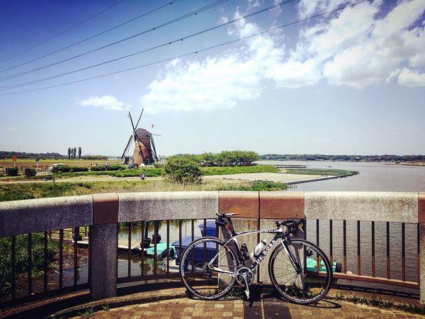 印旛沼 佐倉ふるさと広場 オランダ風車 ロードバイク DeRosa 佐倉 千葉 Chiba,Japan 練習