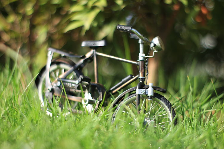 Aceh Grass Plant Field Land Selective Focus Green Color No People Nature Day Transportation Growth Bicycle Land Vehicle Mode Of Transportation Outdoors Wheel Stationary Metal Sunlight Meadow