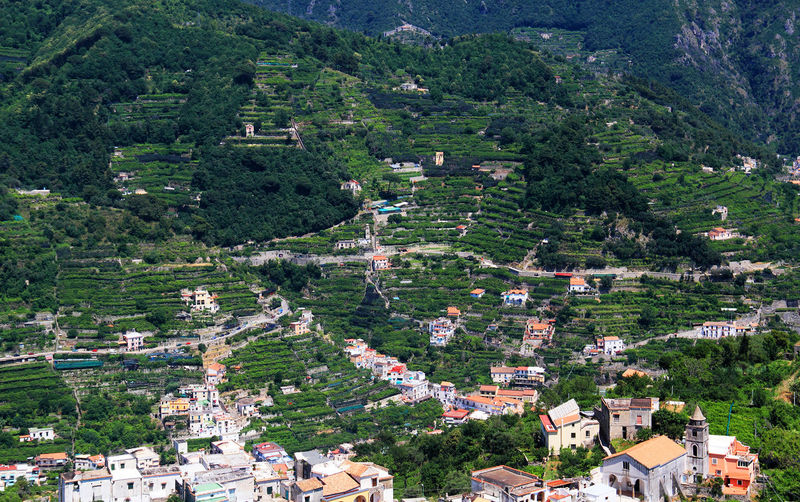 High angle view of buildings on green mountain at ravello