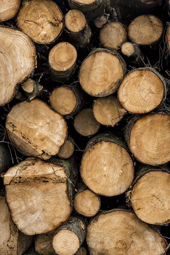 Abundance Arrangement Backgrounds Close-up Day Deforestation Environmental Issues Firewood Forestry Industry Fossil Fuel Fuel And Power Generation Full Frame Heap Large Group Of Objects Log Lumber Industry Nature No People Pile Stack Textured  Timber Tree Ring Wood - Material Woodpile
