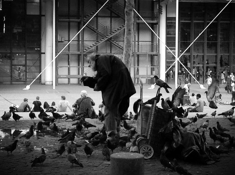 First Eyeem Photo France Blackandwhite Birds Monochrome Homeless Pidgeons Feeding  People Blackandwhite Photography Black & White Uniqueness