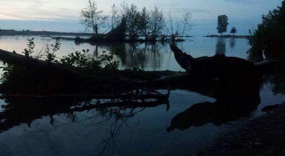 Lake Outdoors