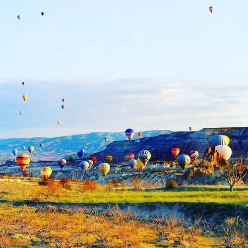 View of hot air balloons on field against sky