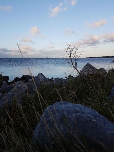 Sea Horizon Over Water Water Tranquil Scene Sky Scenics Tranquility Beauty In Nature Beach Nature Idyllic Cloud - Sky Non-urban Scene Shore Cloud Remote Moss Fallen Tree Outdoors Sunbeam
