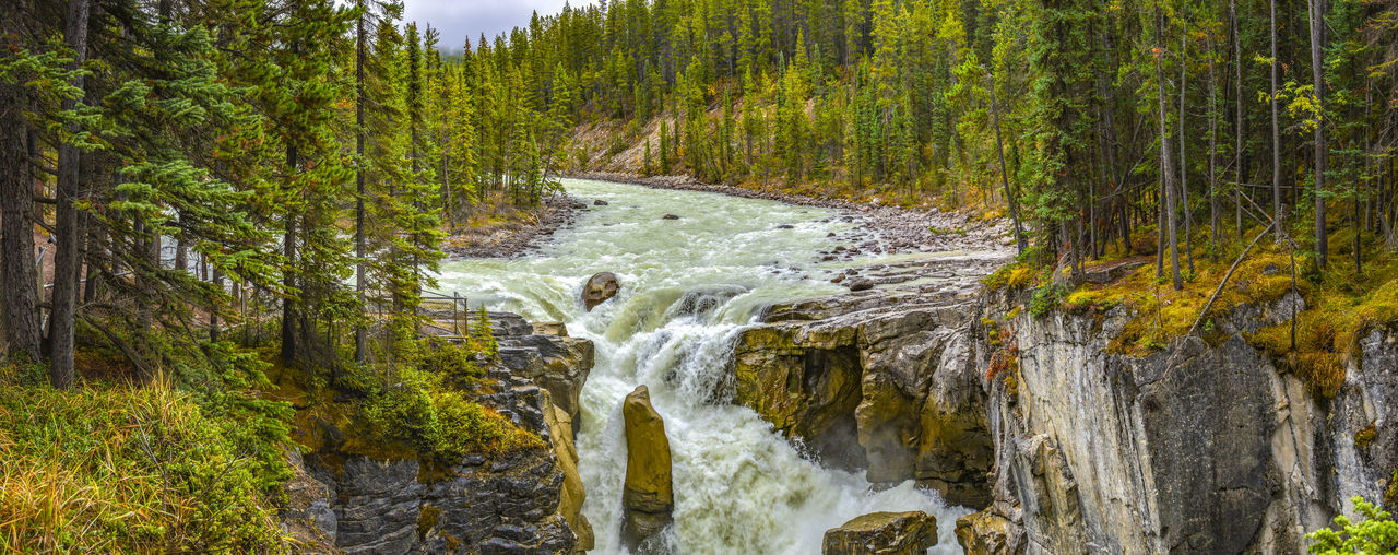 JASPER NATIONALPARK, ALBERTA,, CANADA. Panorama view of Athabasca Falls Jasper National Park Waterfall River Rock Panorama View Beauty In Nature Forest Pine Woodland Stream - Flowing Water Tranquility WoodLand Green Color Flowing Water Scenics - Nature Athabasca Falls Canada Motion Environment Tourist Attraction  Evergreen Tree No People Cascade Water Nature Outdoors