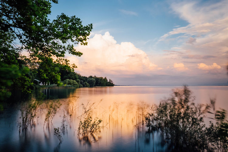 lake view flower island Mainau Mainau Nature Sky And Clouds Beauty In Nature Cloud - Sky Day Insel Mainau Island Lake Lake View Lakeshore Long Exposure Nature No People Outdoors Reflection Scenics Sea Sky Sunset Tranquil Scene Tranquility Tree Water Waterfront