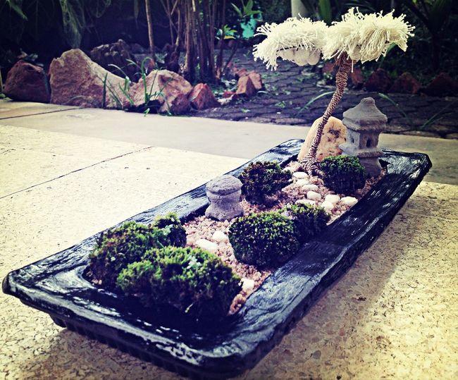white steps,white tree Mini Zen Garden Zen Garden