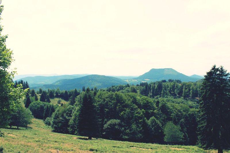 Paysage Beautiful Nature Beautiful Landscape Landscape France Vosges 🍃🌾🌼🌳🌲