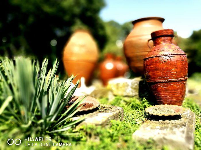 Colour Of Life Amphoras Antiques Antiquity