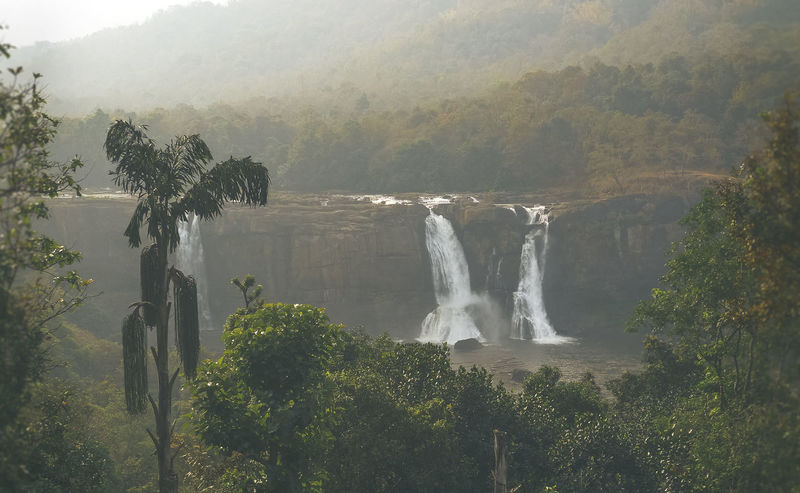 Abundance AthirapallyFalls Athirappilly Beauty In Nature Flowing Water Fog Foggy Green Growth Kerala Kerala India Lake Landscape Morning Light Nature No People Outdoors Plant Scenics Travel Destinations Tree Water Waterfall Full Frame