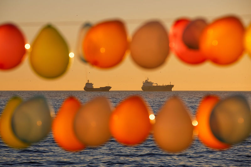 Baloons Istanbul Ship Sunset Food Food And Drink Healthy Eating Orange Color Wellbeing Side By Side Freshness Indoors  Fruit In A Row No People Vegetable Still Life Large Group Of Objects Arrangement Order Tomato Raw Food Selective Focus Close-up Orange The Creative - 2019 EyeEm Awards My Best Photo