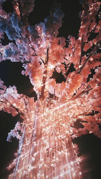 цветы огни небо Ночь Night Night Lights сакура декор декоративное освещение кузнецкий мост Space Pixelated Abstract Pattern Backgrounds Dissolving Full Frame Textured  Close-up