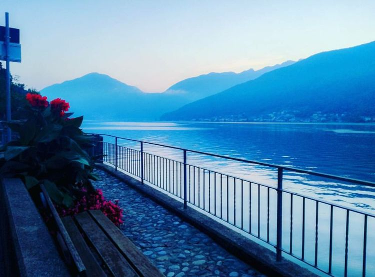 Lugano Lugano, Switzerland. Lake Mountain Nature Outdoors Flower Scenics Water No People Sea Sky Beauty In Nature Sunset Day Mountain Range Travel Destinations Tree Morcote Photography Photooftheday Beautiful First Eyeem Photo Beautiful Nature