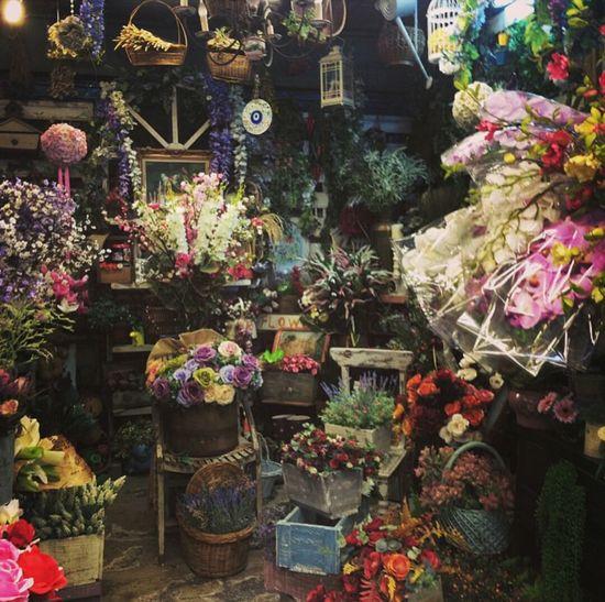 Colors :) Flowers Flowershop Jjmarket Jjmarketthailand Bangkok Thailand Colors