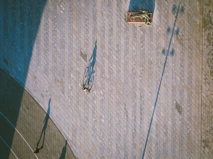 City shadows Aerial Shot City DJI X Eyeem Drone  Aerial View Animals In The Wild Architecture Built Structure City Shadows Day Footpath High Angle View Mavic Mavic Pro Metal No People Outdoors Shadow Sunlight Wall - Building Feature Water Wood - Material The Street Photographer - 2018 EyeEm Awards The Creative - 2018 EyeEm Awards