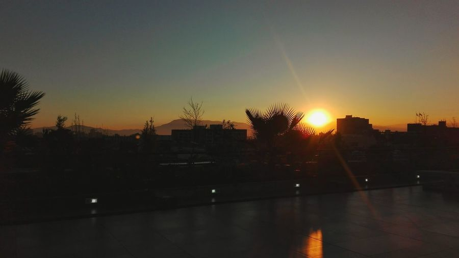 Sunshine Sol
