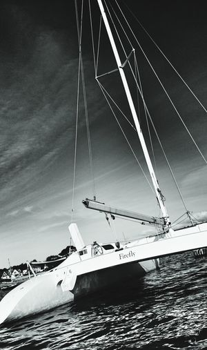Life is a catamaran Sailing Catamaran Freedom EyeEm Nature Lover