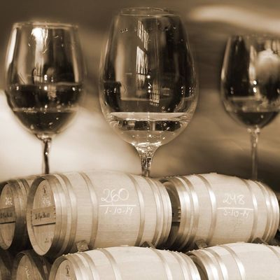 Bodegas Viños Bodegas La Rioja Barricas
