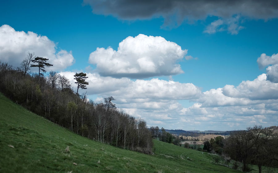 Spring Landscape Beauty In Nature Blue Cloud Cloud - Sky Cloudy Day Field Grass Grassy Green Color Growth Hill Kent Landscape Nature No People Non-urban Scene Outdoors Plant Remote Scenics Sky Tranquil Scene Tranquility Tree