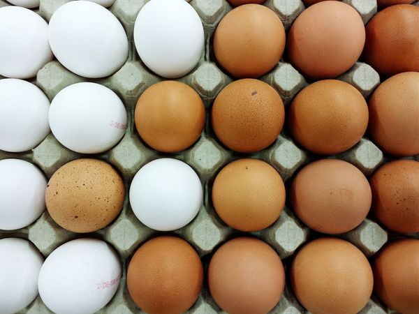 Fresh eggs with Fresh 3 Eggs Precision Food Naturally Bestseller  Eyeem Market Deutschland EyeEm Deutschland Better Together EyeEm Bestsellers View From Above Close-up Pattern Pieces Beautifully Organized Eggs...