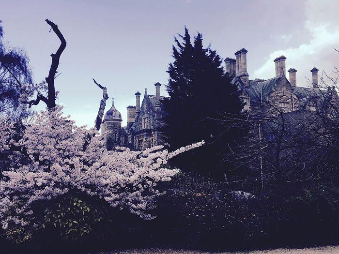 Hidden Places Hidden Mansion Mansion Wedding Venue