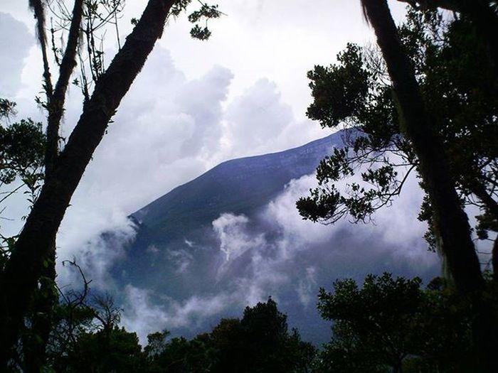 Hari mulai gelap Dindingkawah Gununggede dilihat dari Puncak  Gunungpangrango saat SORE hari. Westjavaindonesia . 2007. Kamerafujifilm Tree Fog Ringoffire Volcano Nature Landscape Mountains Instamood