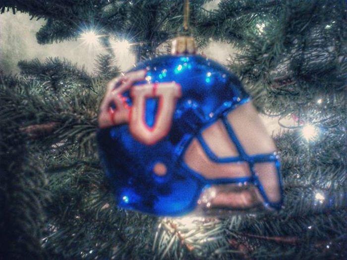 Random Christmas ornaments ........why not..... Ks_pride Holidays Holiday Christmastree Randomchristmastreeornaments