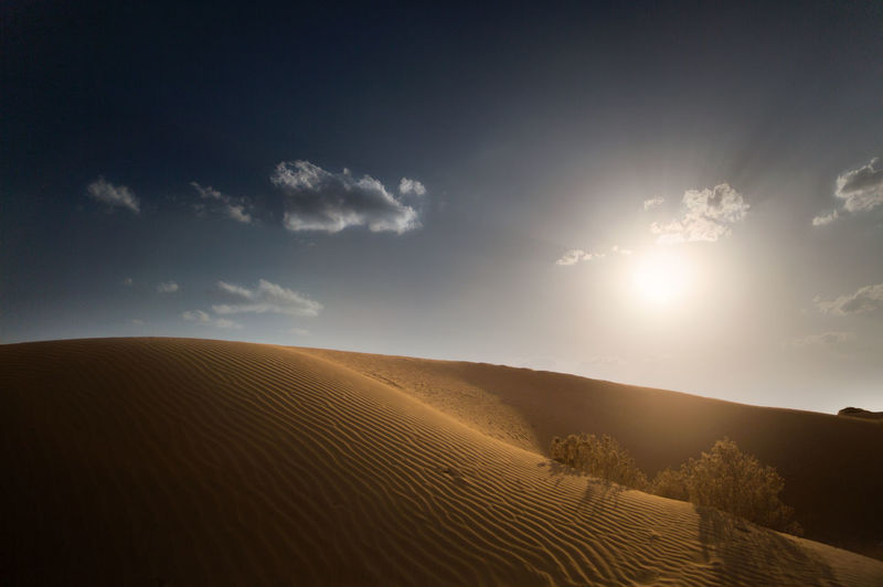 Sunset at Thar Sunset Desert Sand Dune Astronomy Sand Sun Desert Sky Landscape Dramatic Sky