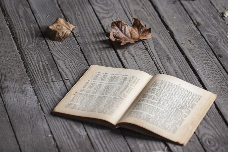 a book in the autumn Autumn Autumn Colors Book Of Dreams... Books EyeEmNewHere Wood Book Wood - Material