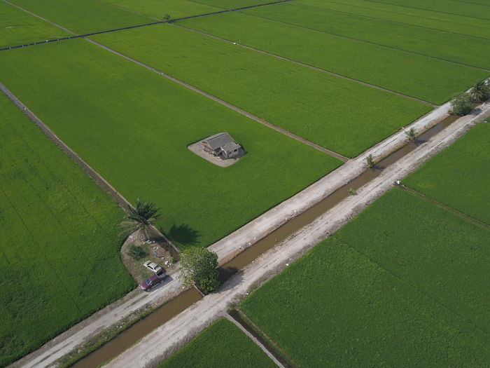EyeEm Selects Agriculture Farm Rural Scene Field Aerial View High Angle View Growth Agricultural Machinery Green Color Irrigation Equipment Nature Day Outdoors Cereal Plant Landscape Rice Paddy Occupation Working Food Grass No People Water