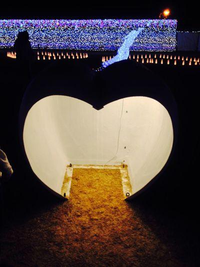Japan 可愛い Cute 日本 Okinawa 沖縄 Light Up ナイト Night Light ライトアップ はーと ハート型 Heart Heart-shaped かまくら Kamakura