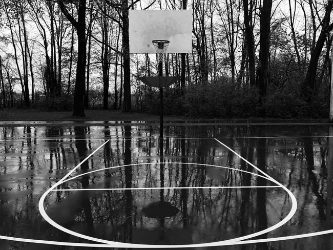 Tree Water Outdoors Bare Tree Nature Day Tranquility Basketball - Sport Growth Sky Beauty In Nature No People r Scenics Basketball Rain Rainy Days Park - Man Made Space EyeEmNewHere The Week On EyeEm