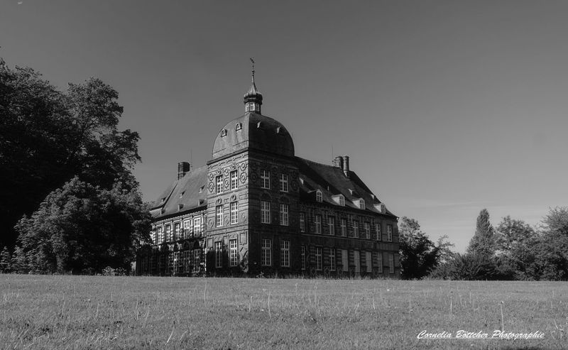 Schloss Hovestadt Architecture Building Exterior Built Structure No People Outdoors Tree Sky Day Grass Fotooftheday Photography Bnw_magazine Bnw_lover Bnw_of_our_world Bnwlovers Bnw_shot Castle Park Close-up Eyeemphotography EyeEm Best Shots - Black + White Eyem Gallery Eyem Best Shots